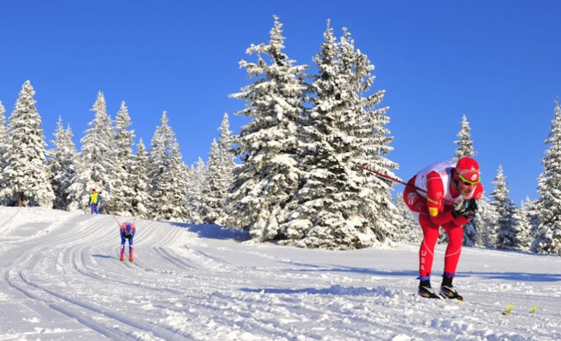 Skiergometer